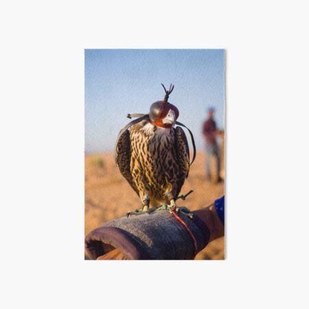 Peregrine Falcon Art Board Print