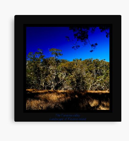 The Tamarins valley Canvas Print