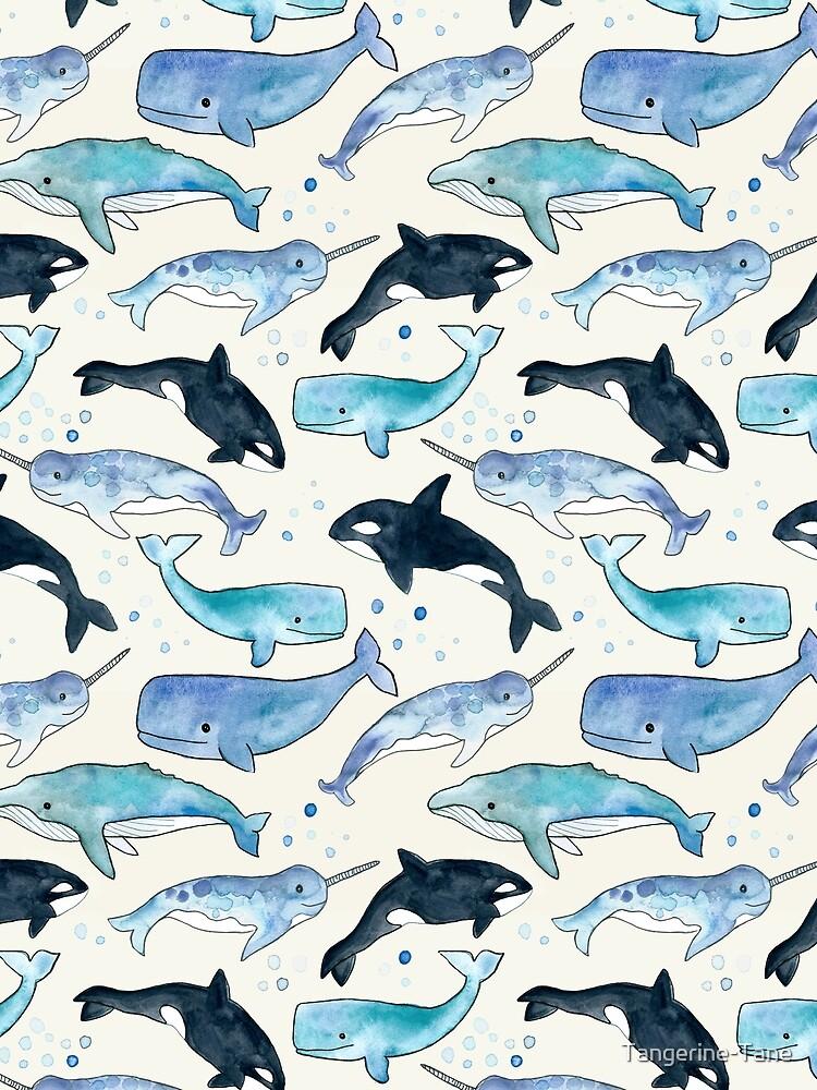 Ballenas, Orcas y Narwhals de Tangerine-Tane