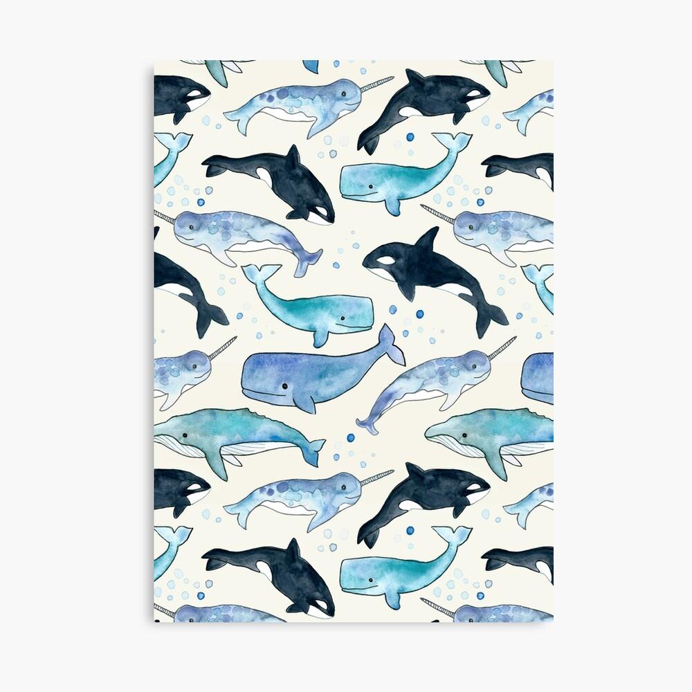 Ballenas, Orcas y Narwhals Lienzo