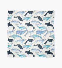 Pañuelo Ballenas, Orcas y Narwhals
