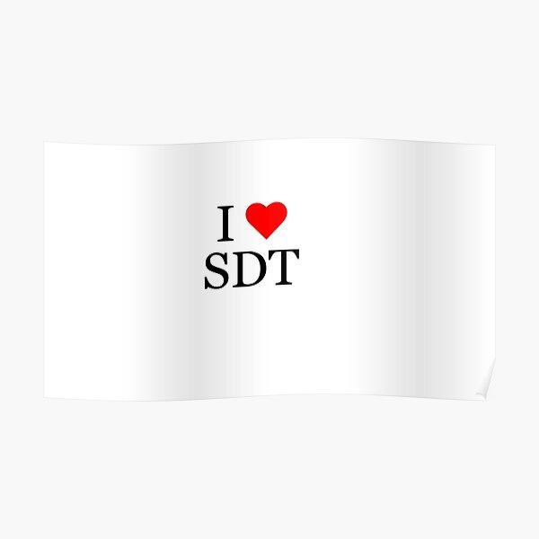 I Heart SDT Poster