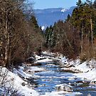 Winter Brook 02 by Daidalos