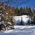 Winter Scene by Daidalos