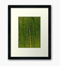 Lost Patterns Framed Print
