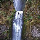 Multnomah Falls, Oregon by Nancy Richard