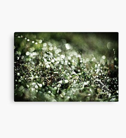 Glitter Grass Canvas Print