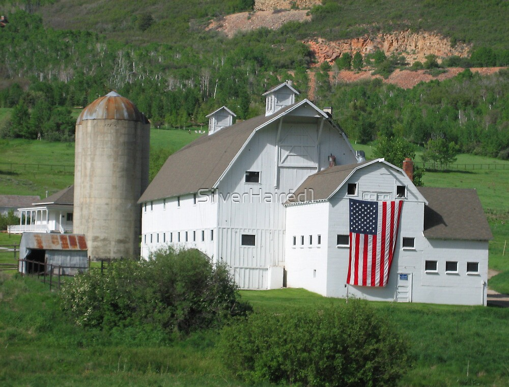 Suzy's Barn--Park City, UT by SilverHaired1