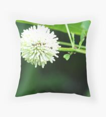 Poofy Throw Pillow