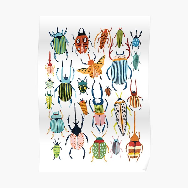 Woodland Beetles Poster