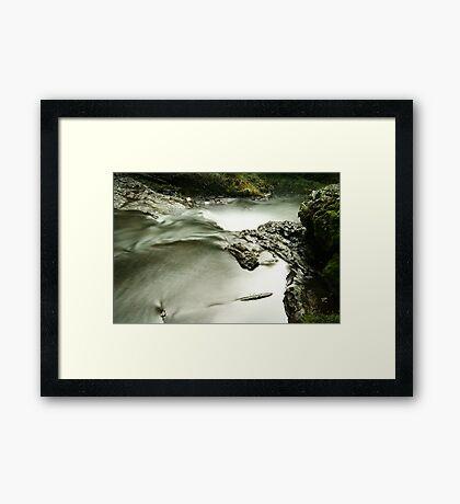 Against the flow Framed Print