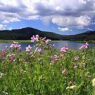 Whitney Reservoir by Gene Praag