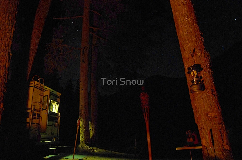 Camp at Midnight by Tori Snow