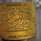 Wisconsin Agriculturist and Farmer by ZeroAnd09