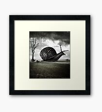 Snail Trail Framed Print