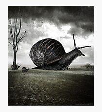 Snail Trail Photographic Print