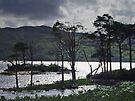 Loch Assynt by WatscapePhoto