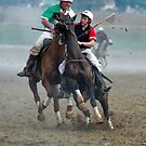 Polocrosse by GailD