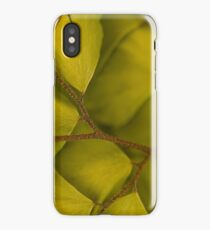 Bedazzled In Depth Left © Vicki Ferrari Photography iPhone Case/Skin