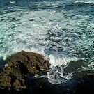 splash  by annierose