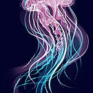 The Jellyfish by Cristina Ion