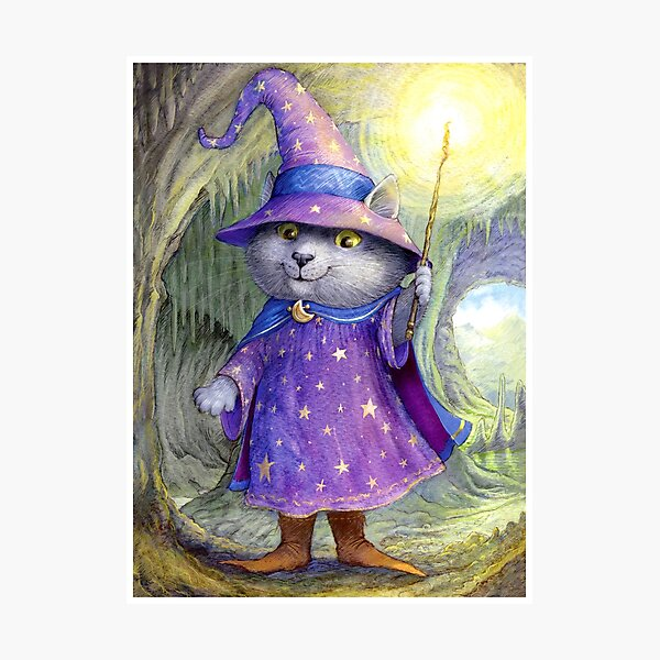 Purlin the Grey - wizard cat Photographic Print