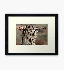 Fence Post , Willochra, South Australia Framed Print