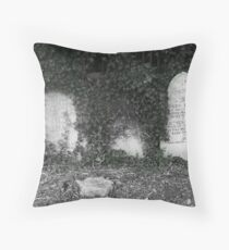The Robinsons Throw Pillow