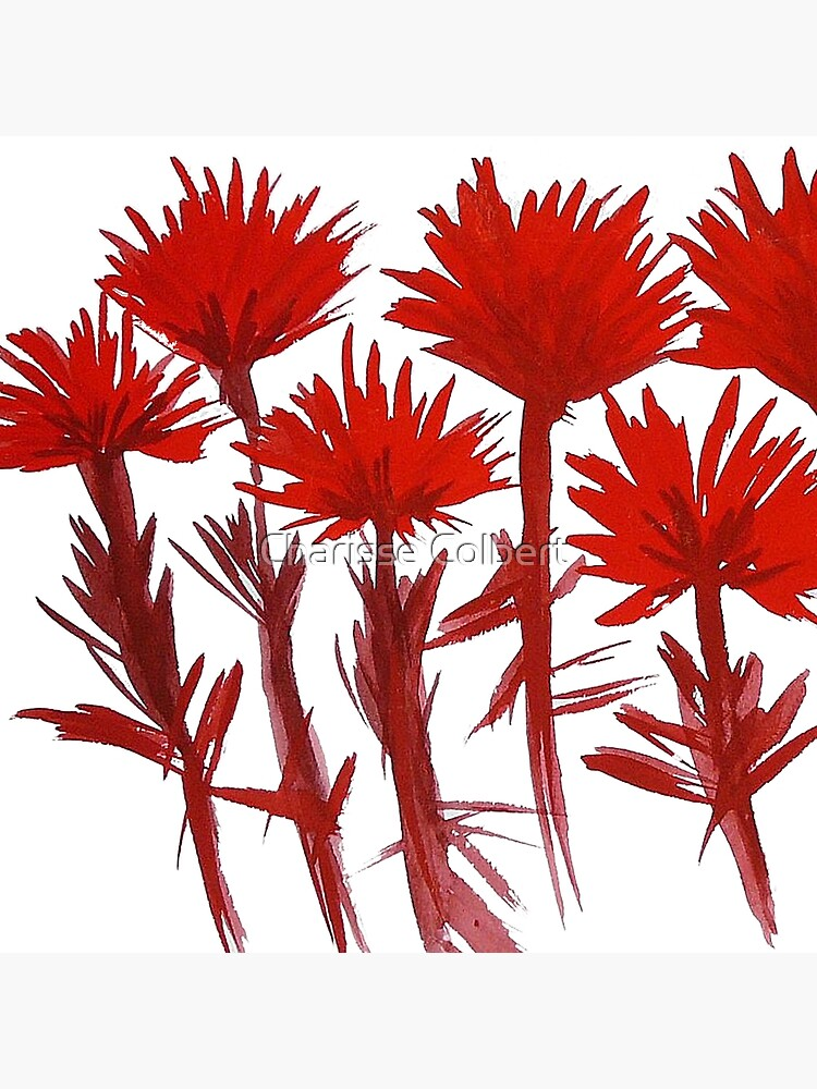 Indian Paintbrush  by charissecolbert