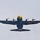 """Fat Albert"" C-130 Hercules by Henry Plumley"