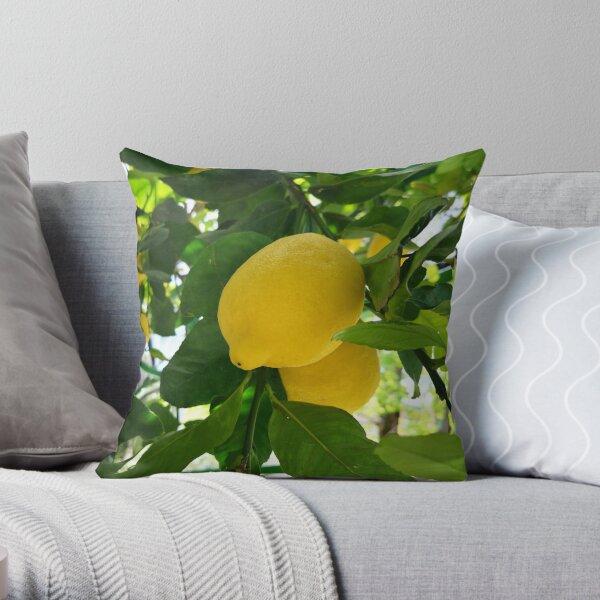 Lemon hanging on a lemon tree, Maiori, Italy Throw Pillow