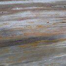 Petrified Wood 4 by oscarcano