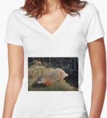 Groundhog Women's Fitted V-Neck T-Shirt