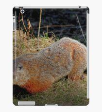 Groundhog iPad Case/Skin