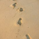 Sandy Footprints - by Heather Ross by Bo-Ross