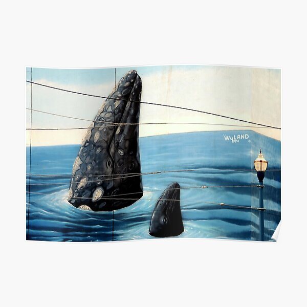~Wyland Whaling Wall Pier 39~ Poster