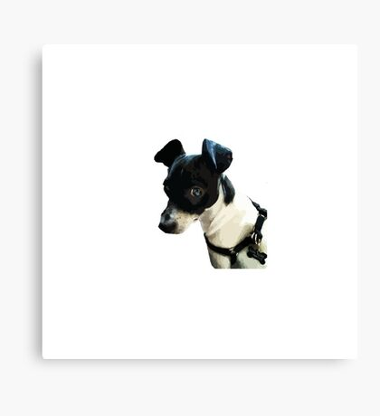 Carl the Rat Terrier Canvas Print