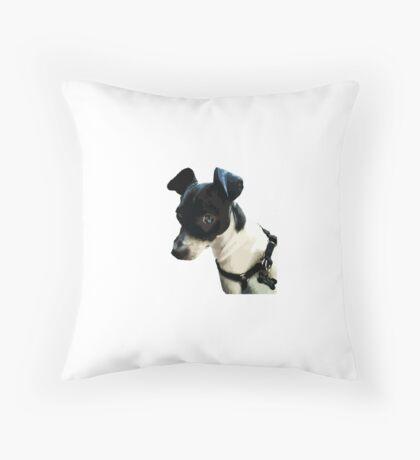 Carl the Rat Terrier Throw Pillow