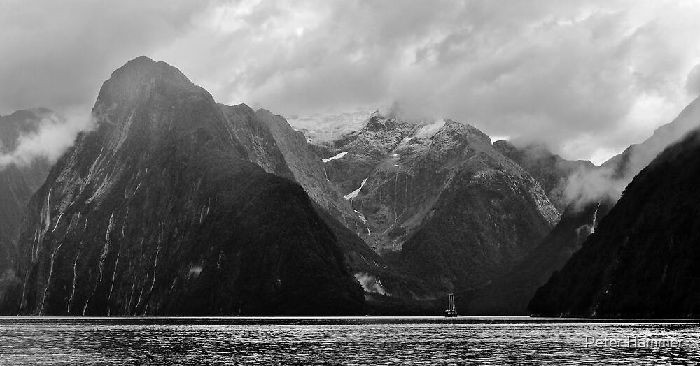 Mitre Peak by Peter Hammer