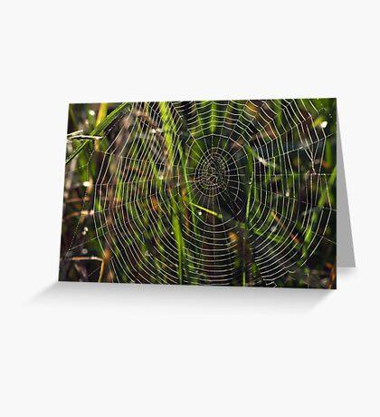 Green cobwebs Greeting Card