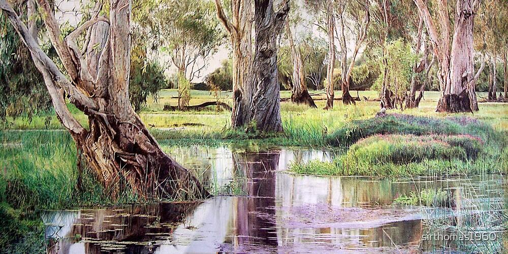 Reflections of Kakadu by sirthomas1960