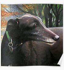"Greyhound Commissioned Portrait 2 (""Poppy"") Poster"