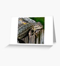 Texture of Nature; Color of Scales Greeting Card