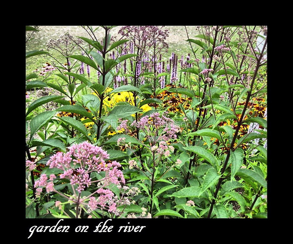 Garden On The River by Sharon A. Henson