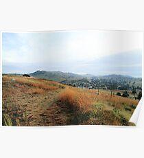 Grass Path - Mt Parnassus Poster