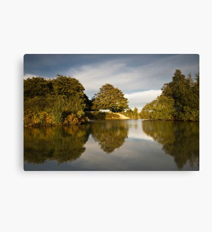 Cadman's Pool New forest Canvas Print