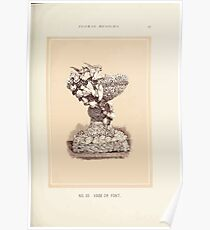 Floral Designs Series I a hand book for cut flower workers and florists John Horace McFarland 1888 0083 Vase or Font Poster