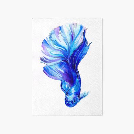 Betta Fish Blue Art Board Print