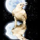 """""""Spirit Raven, Star Eater"""" by Skye Ryan-Evans"""