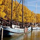 Autumn in Enkhuizen (the Netherlands) by Arie Koene